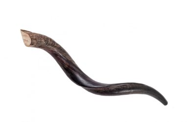 Why Shofar Blowing has Spiritual and Emotional Significance in Many Christian and Jewish Congregations