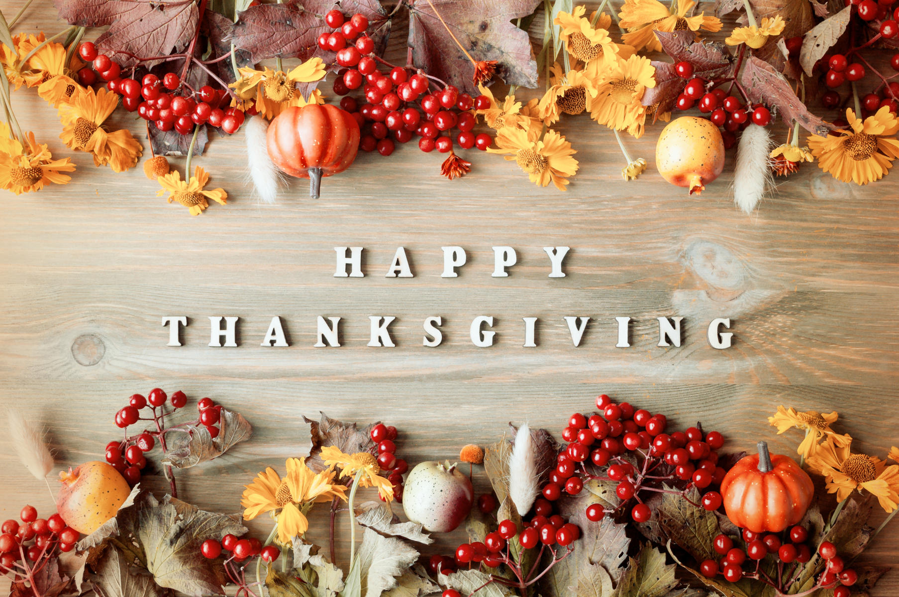 Thanksgiving in the USA: History and Traditions of the Holiday